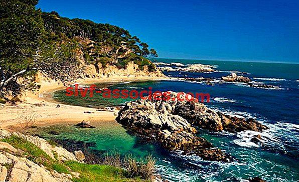 kysten