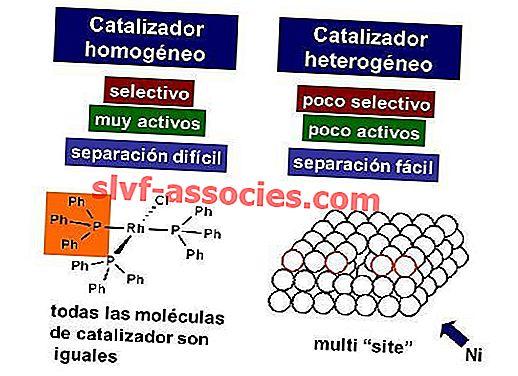 Homogen katalysator