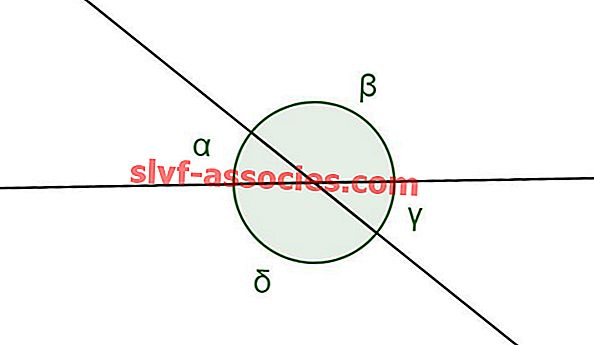 Angle Opposite to Vertex