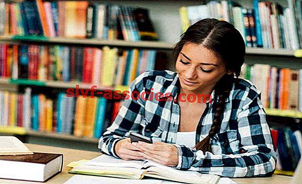 Kredit akademik