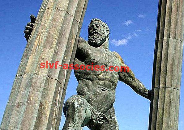 Hercules-kolommen