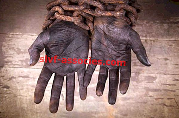 Slave Traffic